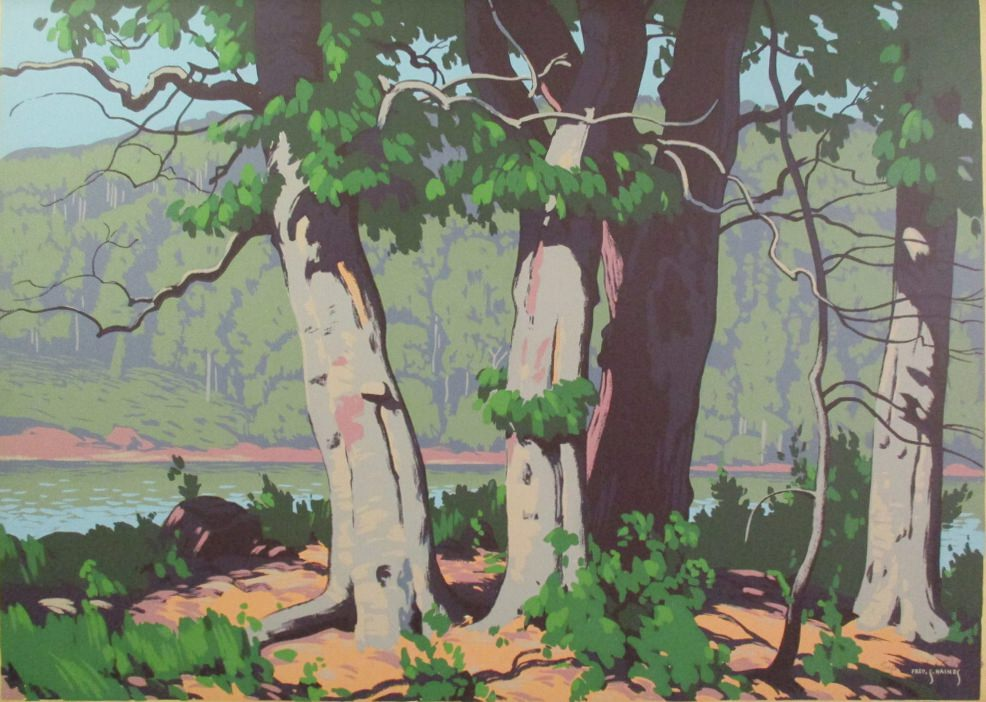 Beech Woods by Fred S Haines at ArtFINDca